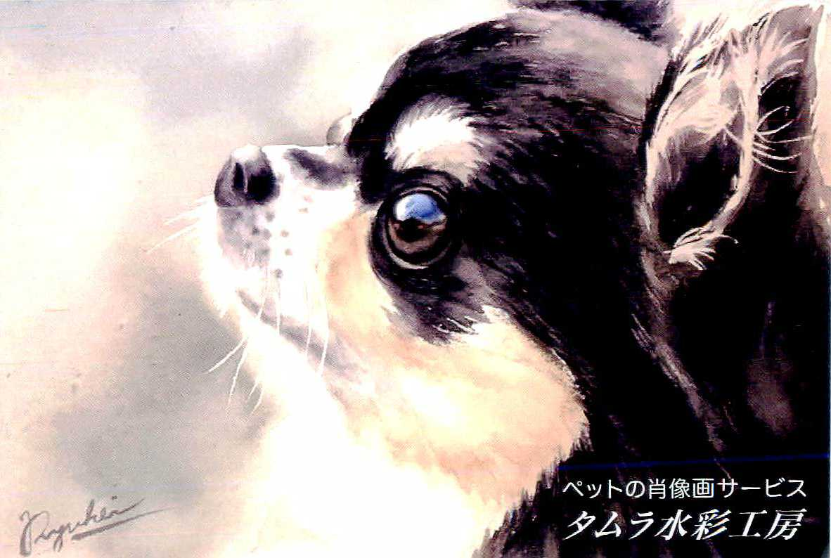 ペットの肖像画(水彩画)描きます